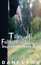 Tales of a Forgotten Wizard- Days in the Wand Shop (A Harry Potter Fan Fic) by Danceemb