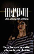 Le labyrinthe : des Choix Pour Survivre  by musical_lili