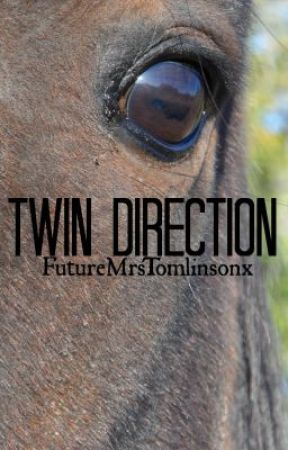 Twin Direction {One Direction} by ignorebutterfliesx