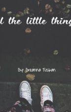 All the Little Things by breannatuskan