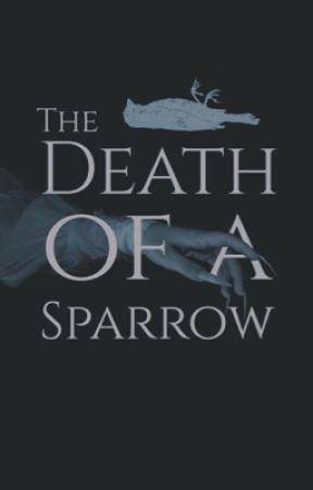THE DEATH OF A SPARROW by ASTERlSMS