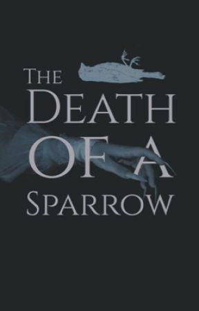 THE DEATH OF A SPARROW by soIniska