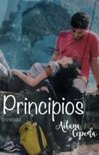Principios  by nreeaa