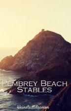 Pembrey Beach by kleinstadtdaemon