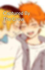Captured By The Crow by kozumekenmararepairs