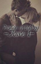 Promise à un bad boy-Tome 1 by TamanaRezayiMzd