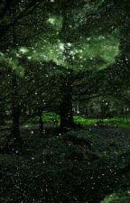 Таинственный лес by 1Djemma