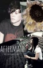 Aftermath // 5SOS Fanfic // Ashton Irwin by writemeinalovestory