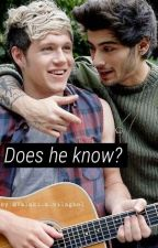 Does he know?  •Ziall ff•  by Valaki_a_vilagbol