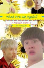 What Are We Again? (NamJin FanFic) by Whussup
