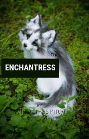 The Enchantress Fox by WildLifeSpirit