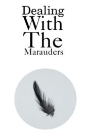 Dealing With The Marauders by silentbynature