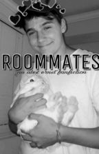 Roommates (An Alex Ernst Fanfiction) by everlustingly
