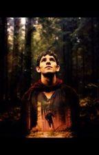 Merlin's secret by dollopheadwriter