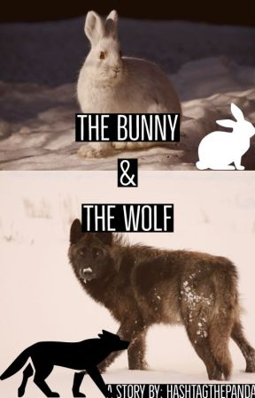 The Bunny and the Wolf by hashtagTHEPANDA