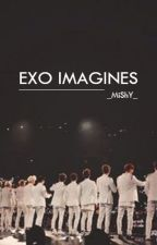 ~ EXO IMAGINES ~ by _MiShY_