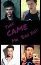 Then came Mr. bad boy by somethingcrazylike