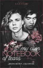 My own notebook of tears    Cashton by anonimowy_czlowiek