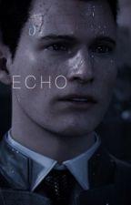 ECHO『 rk800 conner 』 by dopebih