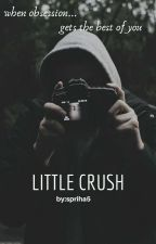 little crush [Haylor] by spriha5