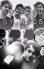 Adopted by 5sos by RosieLikesKiwiCalvin