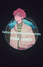 haikyuu! lemons and oneshots; male! reader by oikgasm