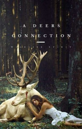 A Deers Connection by WildLifeSpirit