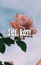 the rose by untitledmq