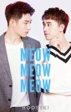 Meow Meow Meow  by Hooseki