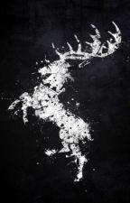 Baratheon// Robb Stark  by taytay3212
