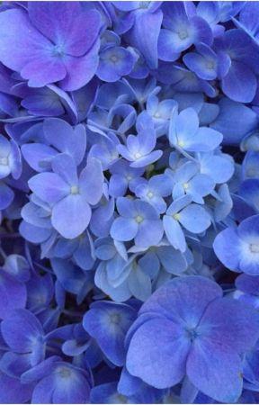 blooming lungs - jjk & pjm by kkaepsomg