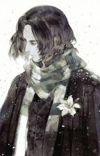 Severus Snape x Reader Story by FanFictionsUnite