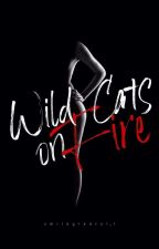 Wild Cats on Fire (gxg) by smileytearsT_T