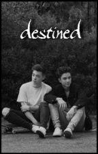 destined || zaniel heavey ✓ by -labellamac