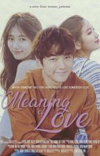 Meaning Of Love by WooSoo_Princess