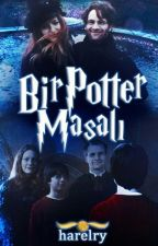 Bir Potter Masalı by harelry