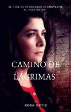 Camino de Lágrimas by Ortiz_Rosa31