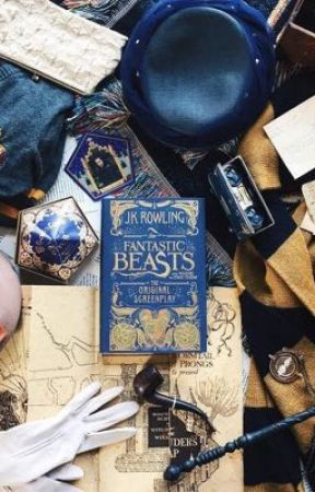 The Curious Incident Of Newt Scamander  by rainbowchild17