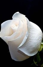 White Roses by EreriExee