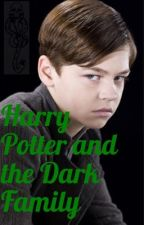 Harry Potter and the Dark Family by HannahCastaline