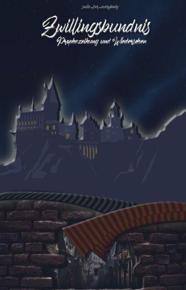 Zwillingsbündnis- Prophezeiung und Wiedersehen (Band 1) (Harry Potter FF )