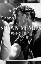 Shawn Mendes Imagines  by sleepyhappyvirgo