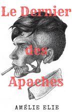 Le Dernier des Apaches by magicworld145