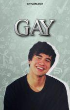 gay :: cashton by chylxrleigh