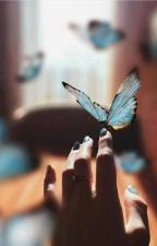 The Butterfly Effect by julissacastro2018