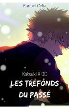 Les tréfonds du passé (Katsuki X OC) by Celiaeonnet