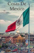 COSAS DE MÉXICO,HISTORIA,GOBIERNO Y COSAS QUE NOS GUSTA HACER by Gokusaijan