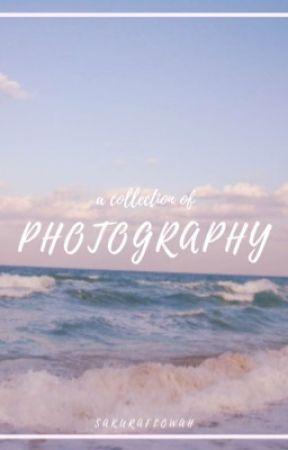 Photography  by SakuraFlowah