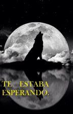 TE   ESTABA   ESPERANDO (camren gip). by MonicaGarciaToro