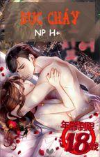 Dục cháy [hiện đại h văn, NP, H] by yuying2611